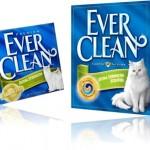 areia higiênica para gatos ever clean, gatos de raça, urina, fezes