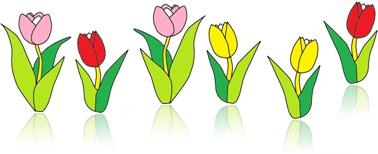 bouquê bouquet flores de jardim estação primavera jardinagem flora fauna solo