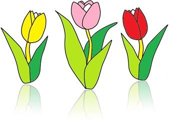 perfume primavera jardim flores flora tulipas holandesas folhas pétalas jardinagem