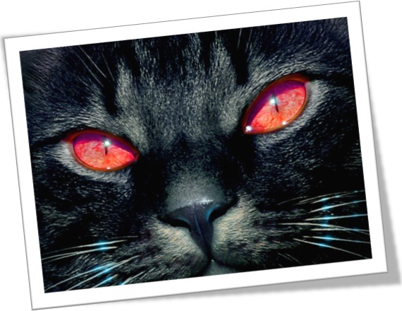 halloween black cat Halloween Vocabulary – Vocabulário do Dia das Bruxas