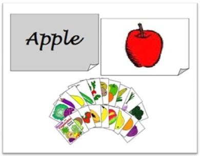 modelo de flash card com imagens e palavras, flash cards ilustrados