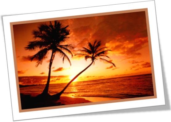 pôr do sol no nordeste, praia, ocaso, poente, sol-posto, sol-pôr