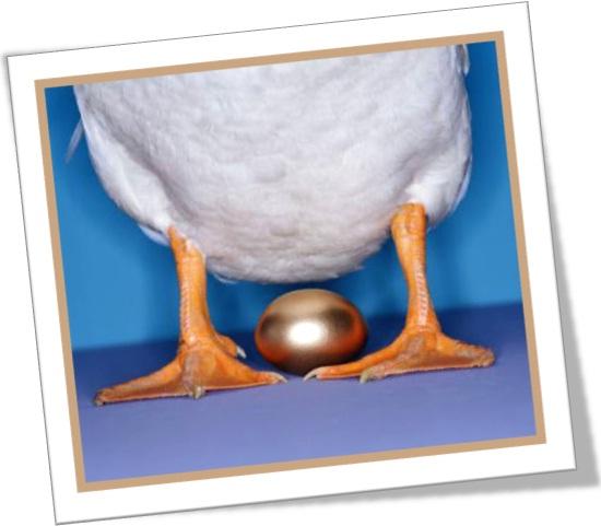 matar a galinha dos ovos de ouro, kill the goose that lays golden eggs