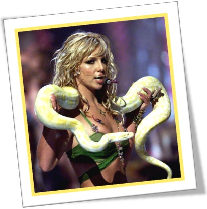 britney spears and a yellow boa, cantora, jiboia amarela, show, palco