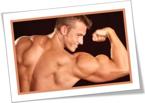 homem flexionando músculos do braço, musculação, homem sarado