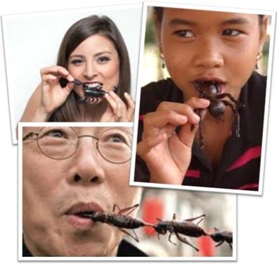 homem, mulher e menina comendo escorpião, aranha e grilo