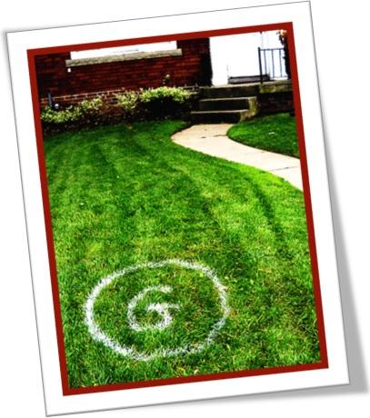 ponto g, g-spot, jardim, gramado, g-point