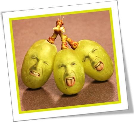 sour grapes, uvas verdes, inveja, despeito, rancor