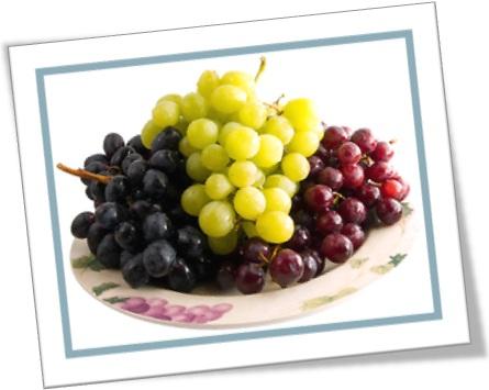 clusters of grapes, cachos de uvas verdes e roxas