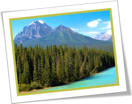 the wild, a natureza, montanhas, rios, árvores, floresta temperada, pinheiros, eucaliptos