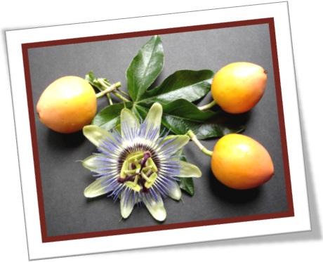 fruta maracujá e flor de maracujá, passion fruit, passion flower