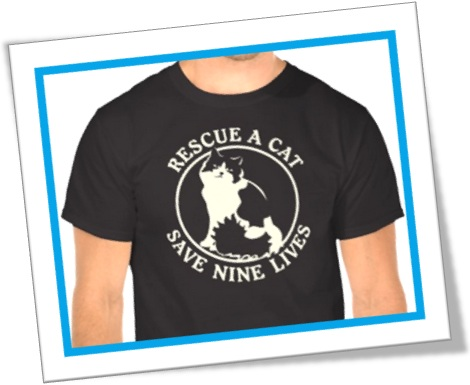 rescue a cat save nine lives, resgate um gato salve sete vidas
