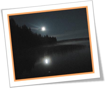black night vida noturna escuridão da noite lua cheia mar escuro