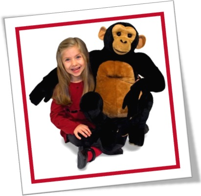 toy section, seção de brinquedos, menina, macaco, boneco de pelúcia, sorrisos