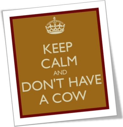 keep calm and dont have a cow, dar piti, dar chilique em inglês