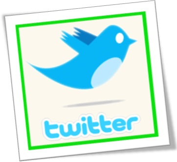 logo logotipo twitter pássaro passarinho rede social twitter