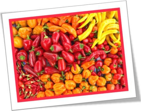 pimenta malagueta, pimentas diversas, chilli, chillies, chili, chilies