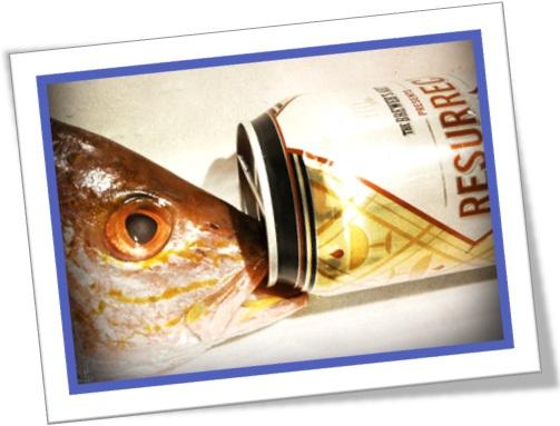 drink like a fish, beber muito, bêbado, peixe e lata de cerveja
