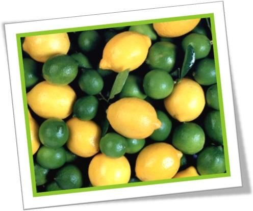 lemon and lime, limão galego, limão verde, frutas cítricas, acidez