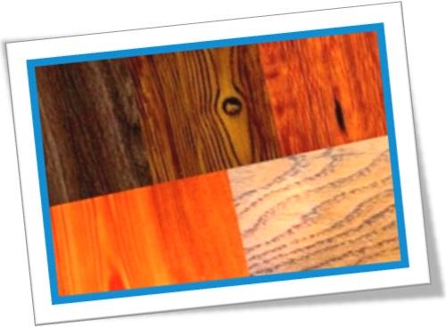 grain of wood, wood grain, grão da madeira de lei, árvore