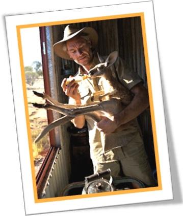 australian outback, homem, canguru, australia, marsupial, animal de estimação