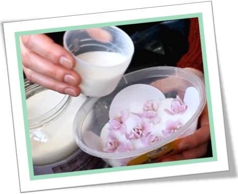 secagem de flores com sílica-gel, how to dry flowers with silica gel