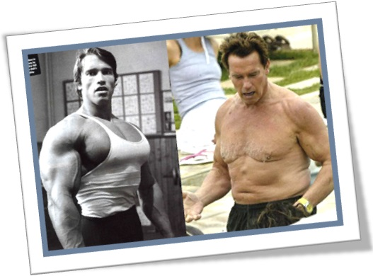 arnold schwarzenegger before and after, jovem musculoso, idoso musculoso