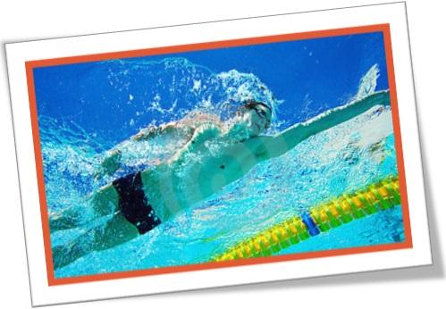 nadadores, desportistas, vigor e energia, natação, esporte, atividade esportiva