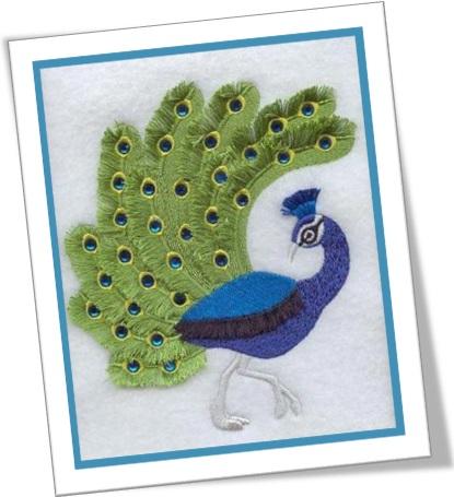 peacock, pavão, costura, bordado, satin stitch, ponto cheio