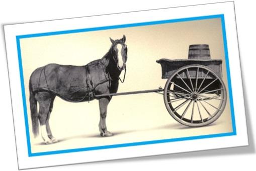 uso de horse para voc u00ea n u00e3o cair do cavalo na prova de ingl u00eas
